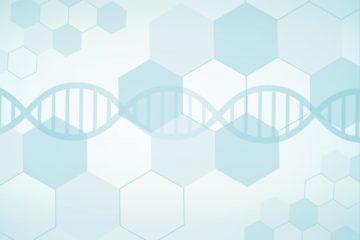 「CAR-T細胞療法「キムリア」部会通過、近く正式承認へ Vol.16」記事内の画像