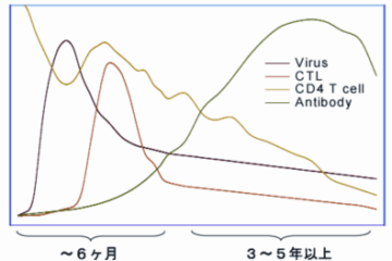 「ウイルスに対する免疫の働き Vol.59」記事内の画像