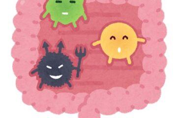 「Vol.138 がん免疫と腸内細菌」記事内の画像